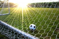 6996265 - a soccer ball in a grass field and goal